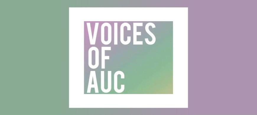 voices_auc_2