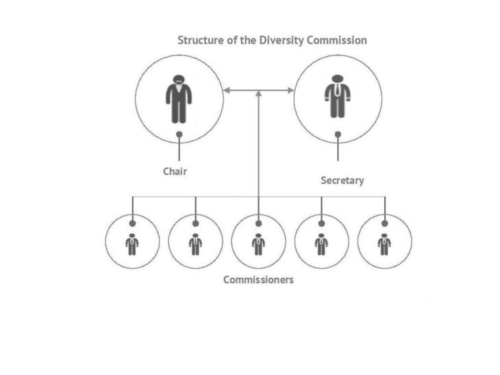 structure of the diversity commission